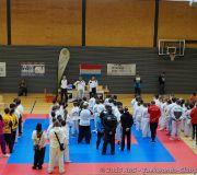 Tournoi enfants Taekwondo Beckerich 2015_02