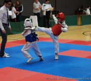 Tournoi enfants Taekwondo Beckerich 2015_07